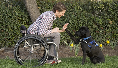 Man in wheelchair high fives black service dog