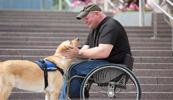 Man in wheelchair smiles at his yellow service dog