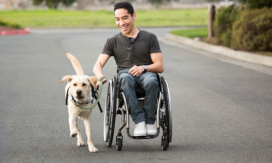 Yellow service dog runs next to graduate smiling in wheelchair
