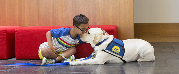 Young boy kisses yellow assistance dog on nose