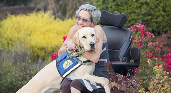 woman sitting in wheelchair with Canine Companions service dog over her lap