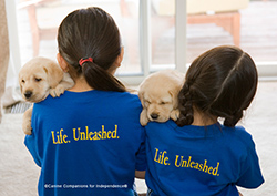 YOUNG-PUPPY-RAISERS_TN.jpg