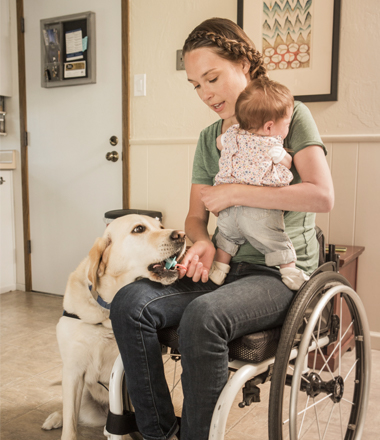 Service Dog Bright helps pick things up for mother in wheelchair with baby