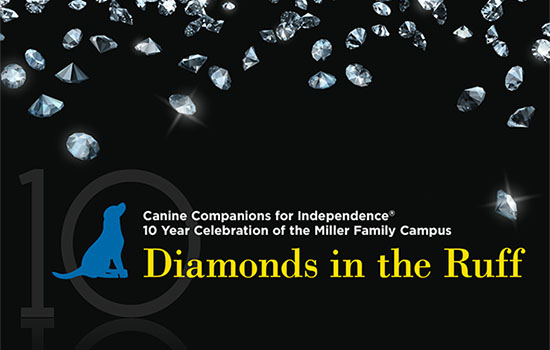 Diamonds in the Ruff logo