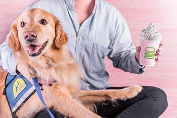 Shake Shack and Assistance Dog