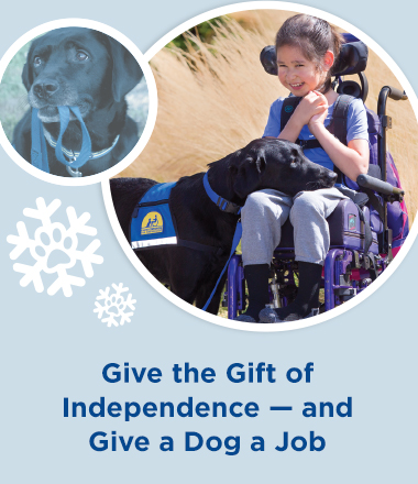 Give the Gift of Independence