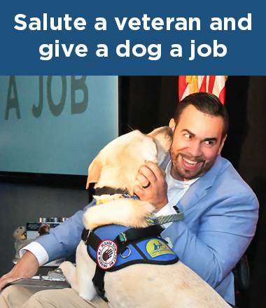 Man with Canine Companions service dog on his lap