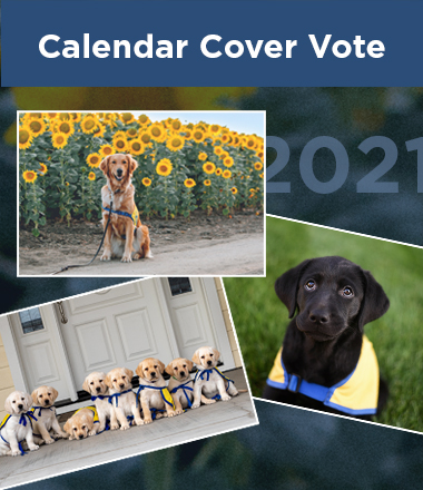 2021 calendar cover options