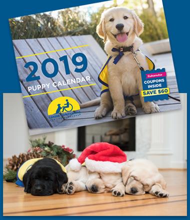 puppy calendar