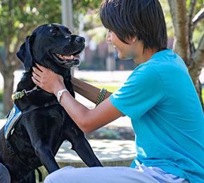 boy with black dog