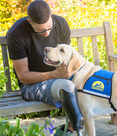 veteran looking at Canine Companions service dog