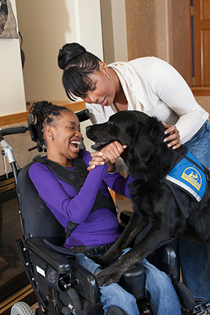 young girl in wheelchair with black lab canine companions dog standing on her lap