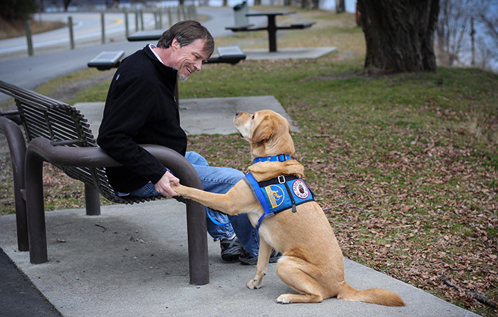 Man sitting on bench holding the paw of yellow Canine Companions service dog