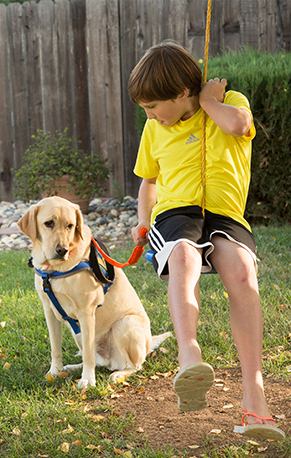 young boy swinging with Canine Companions service dog
