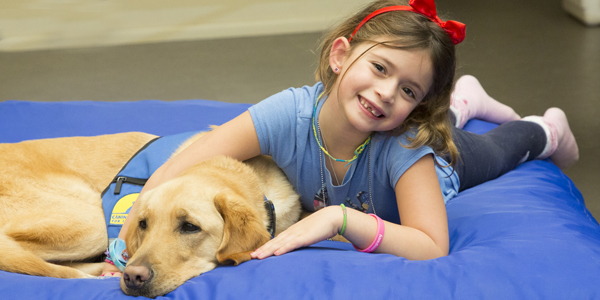 little girl with yellow Canine Companions Service Dog laying on a blue bed together