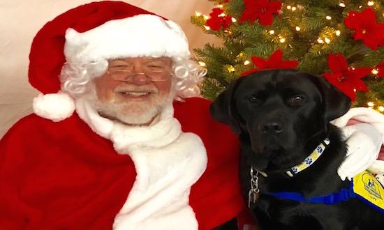 Weldin Santa