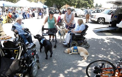 Accessibiltiy Day
