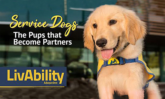 Puppies Appear in Livability Magazine