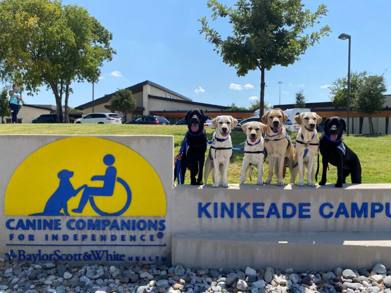 Six dogs lined up next to Kinkeade Campus sign