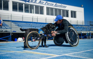 person in athletic wheelchair and a Canine Companions service dog