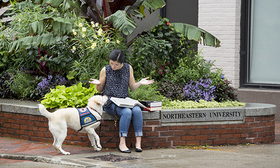 person with Canine Companions service dog