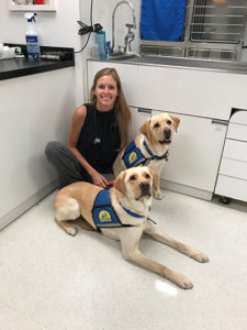 person sitting with two Canine Companions service dogs
