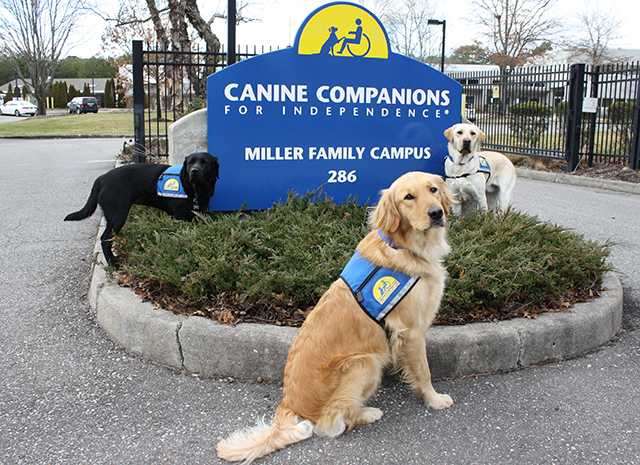 three canine companions service dogs in front of Miller Family Campus sign