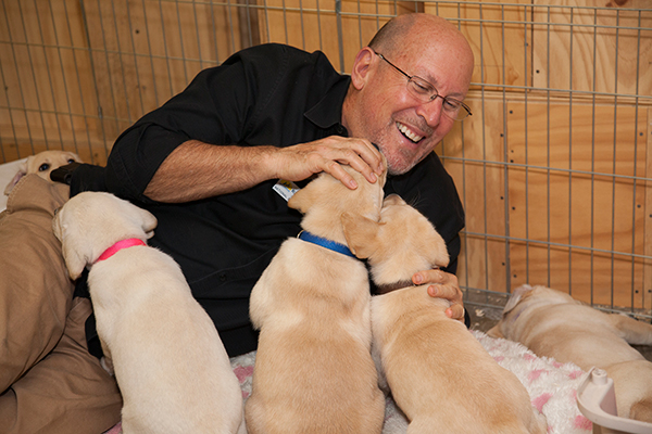 person with a litter of puppies