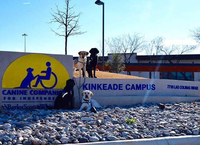 four Canine Companions service dogs around Kinkeade Campus sign