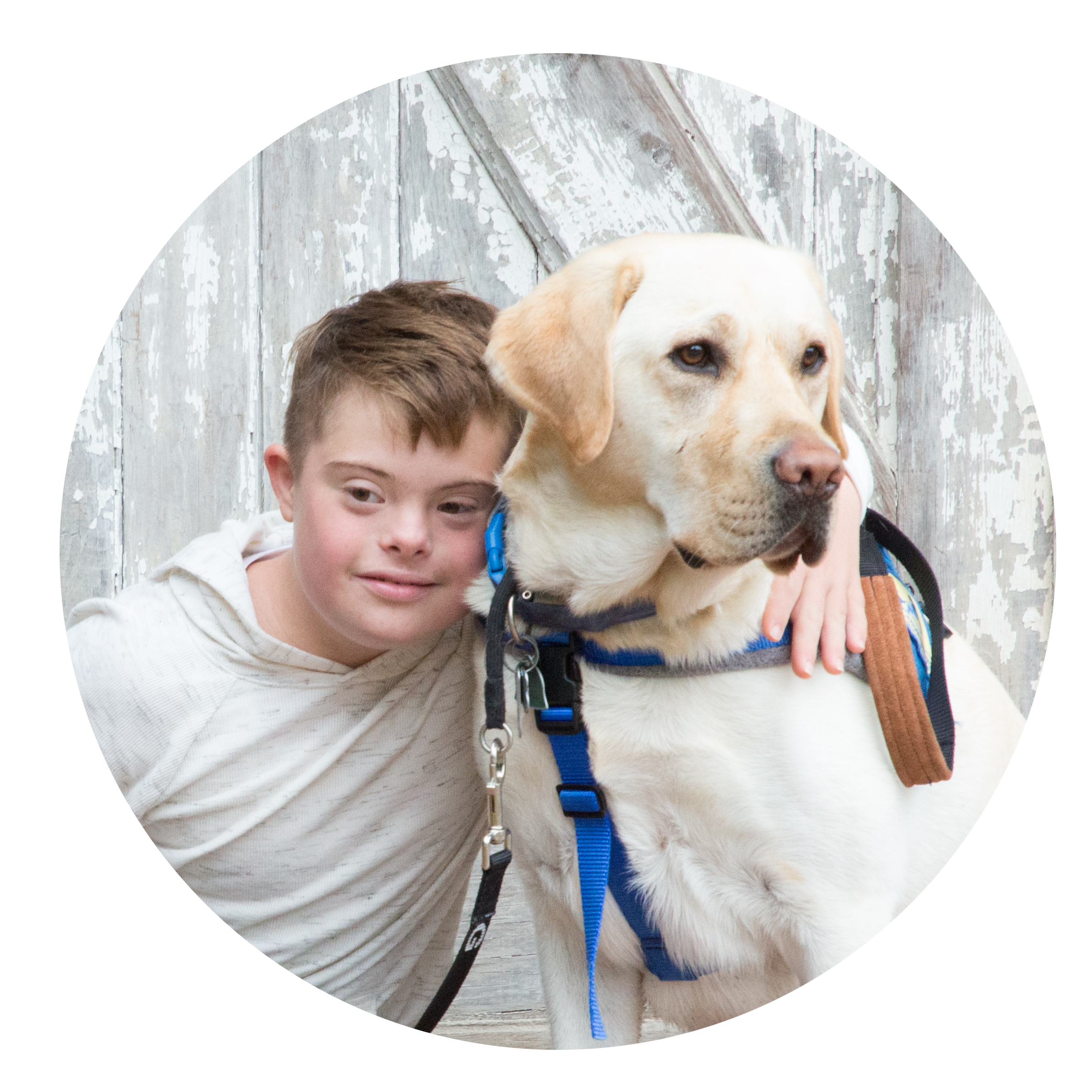 boy and yellow lab