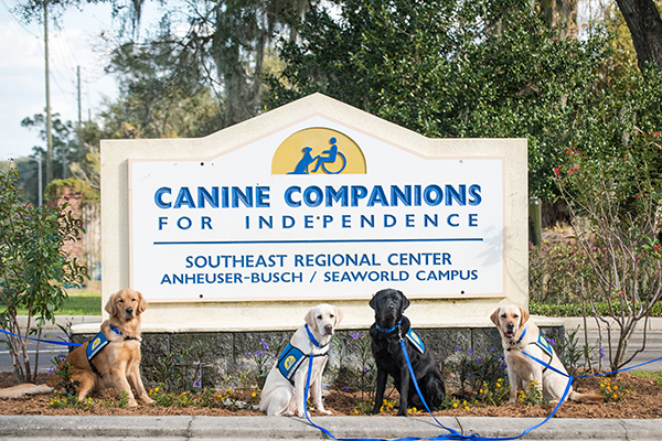 four Caine Companions service dogs sitting in front of Southeast campus sign