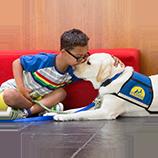 Young boy kissing dog