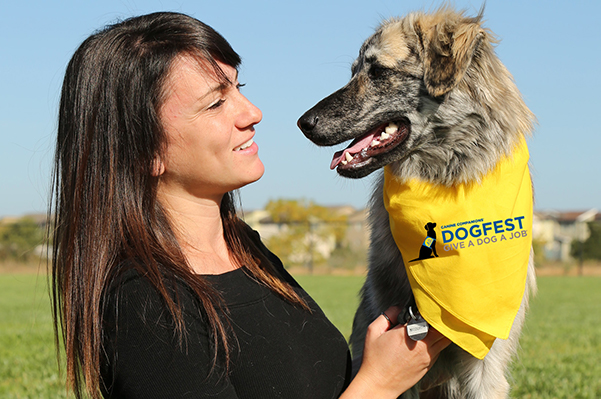 person looking at a dog wearing a DogFest bandana