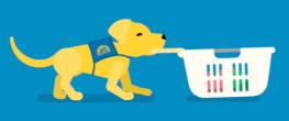 Jobs Puppy