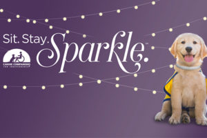 Sit Stay Sparkle logo and Canine Companions puppy
