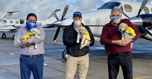 three people standing in front of planes holding Canine Companions puppies