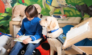Kid reading a book to a therapy dog