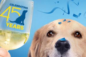 Dog next to wine glass celebrating NER 45th anniversary