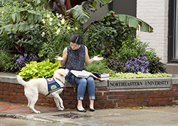 woman sitting on bench reading with dog