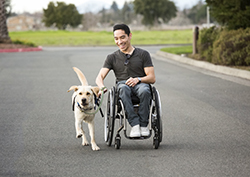 man in wheelchair and dog running