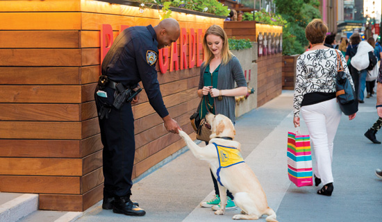 woman with assistance dog meets policeman