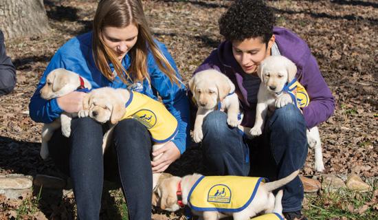 2 volunteers holding puppies
