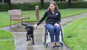 woman in wheelchair with assistance dog