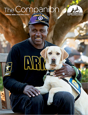 person sitting on a bench with a Canine Companions service dog across their lap.