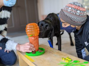 Facility Dog Rumba plays a turn taking game with a young client