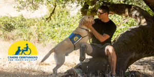 Canine Companions service dog with person who is sitting on a fallen tree