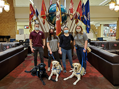 4 adults with 3 puppies with flags behind