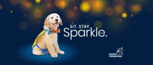 Sit. Stay. Sparkle. logo with Canine Companions puppy