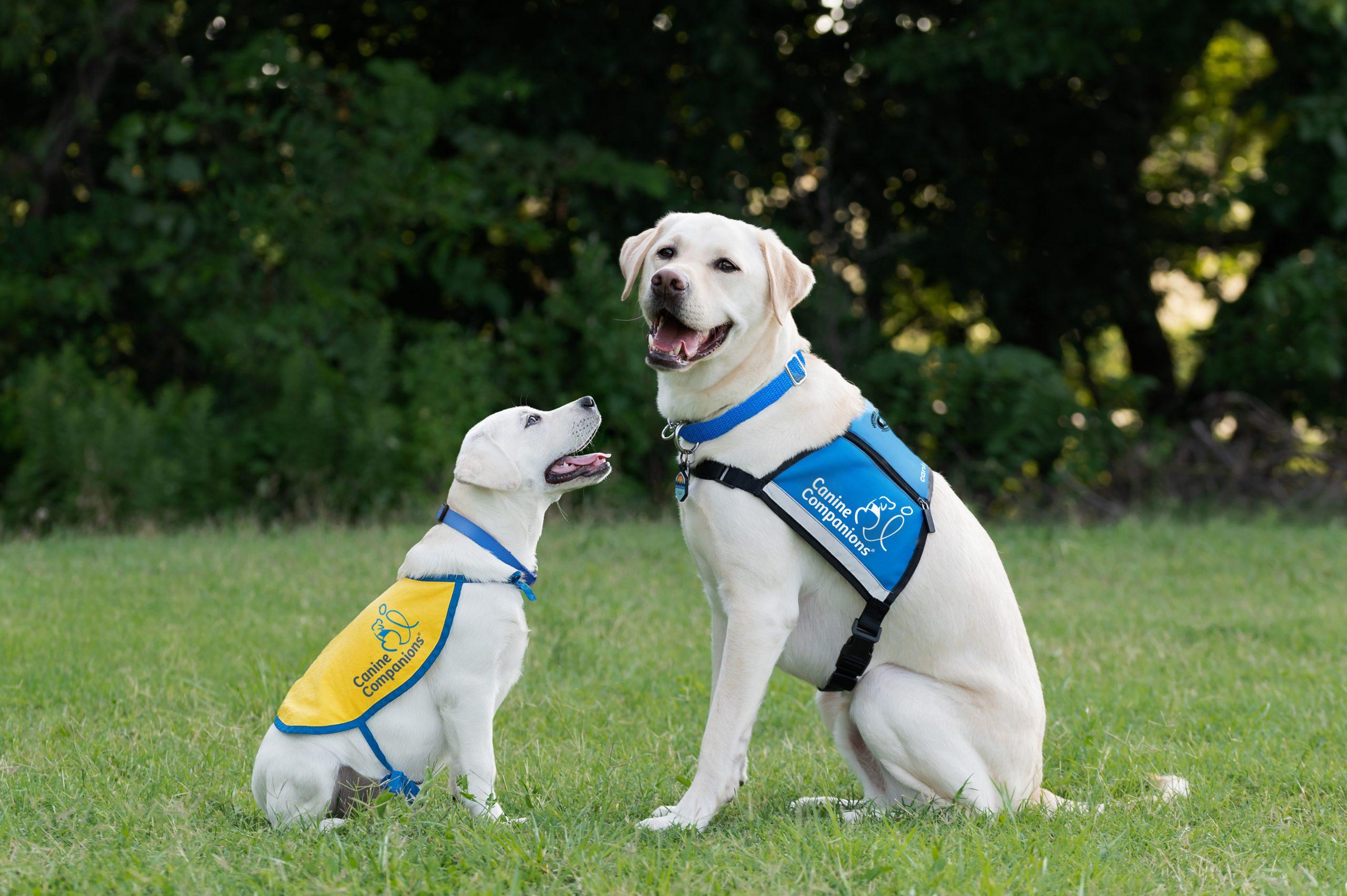 DSC_1110-Riley-VI-and-Hearing-Dog-Fallon-Angela-Mahana-RGB_promo4