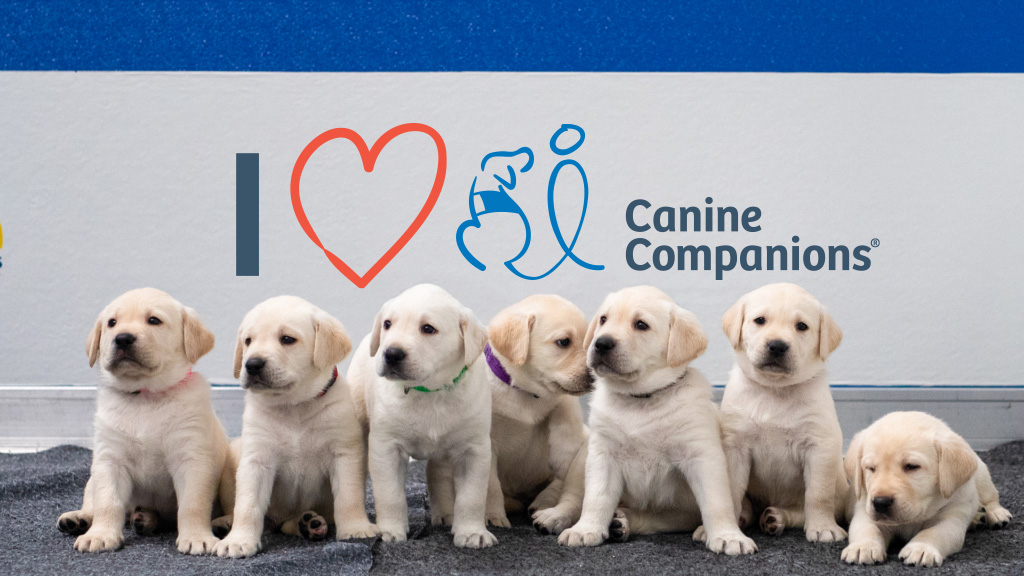 puppies seating in front of a backgroun that says I love Canine Companions
